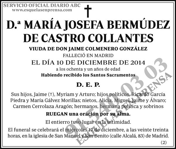 María Josefa Bermúdez de Castro Collantes